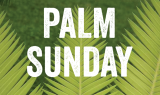 Sermon for Palm Sunday – The Two Parades